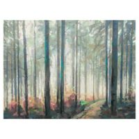Studio Arts 30-Inch x 40-Inch Woodland Journey Wrapped Canvas Wall Art
