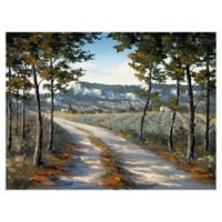 Landscape & Nature 30-Inch x 40-Inch Wrapped Canvas Wall Art