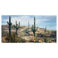 Studio Arts Desert Vista 17-Inch x 24-Inch Canvas Wall Art