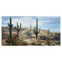 Studio Arts Desert Vista 24-Inch x 48-Inch Canvas Wall Art