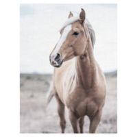 Western Blonde Horse 18-Inch x 24-Inch Wrapped Canvas Wall Art