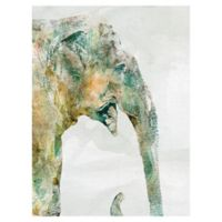 African Colors Elephants 18-Inch x 24-Inch Wrapped Canvas Wall Art