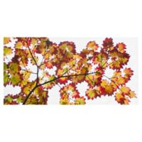 Masterpiece Art Gallery Leaf Silhouettes IV 12-Inch x 24-Inch Canvas Wall Art