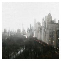 Masterpiece Art Gallery Above Central Park 24-Inch Square Canvas Wall Art