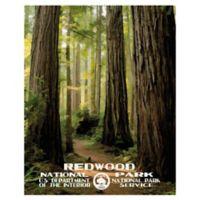 Masterpiece Art Gallery Redwood 22-Inch x 28-Inch Canvas Wall Art