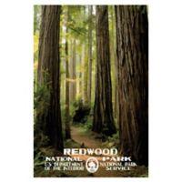 Masterpiece Art Gallery Redwood 24-Inch x 36-Inch Canvas Wall Art