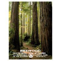 Masterpiece Art Gallery Redwood 30-Inch x 40-Inch Canvas Wall Art