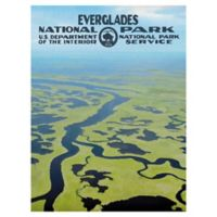 Masterpiece Art Gallery Everglades 30-Inch x 40-Inch Canvas Wall Art
