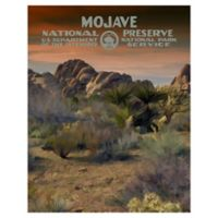 Masterpiece Art Gallery Mojave-1 22-Inch x 28-Inch Canvas Wall Art