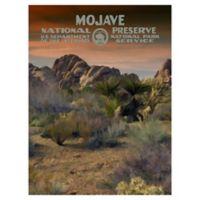 Masterpiece Art Gallery Mojave-1 30-Inch x 40-Inch Canvas Wall Art