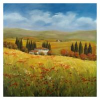 Lo Splendor De La Toscana 24-Inch Square Canvas Wall Art