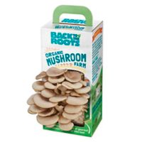 Back to the Roots Growing Oyster Mushroom Kit