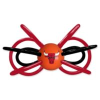 NBA Chicago Bulls Teether & Rattle