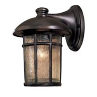 The Great Outdoors® by Minka-Lavery® Cranston 1-Light Wall Mount Lantern in Dark Brown