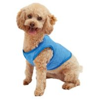 Pawslife Small Cooling Vest in Blue