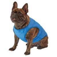 Pawslife Large Cooling Vest in Blue