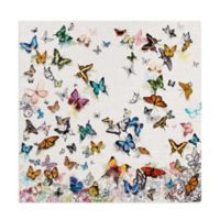 Masterpiece Art Gallery Papillon 24-Inch Square Canvas Wall Art