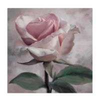 Masterpiece Art Gallery Rose Glow II 30-Inch Square Canvas Wall Art