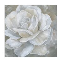 Masterpiece Art Gallery Bombshell Bloom II 24-Inch Square Canvas Wall Art