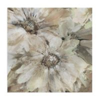 Precious Daisies 24-Inch x 24-Inch Floral & Botanical Wrapped Canvas Wall Art