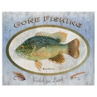 Masterpiece Art Gallery Animals Bluegill 22-Inch x 28-Inch Wrapped Canvas Wall Art