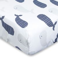 Wendy Bellissimo Landon 200 Thread Count Crib Sheet in White/navy