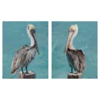 Masterpiece Art Gallery Perched Pelicans 2-Piece 20-Inch x 16-Inch Wrapped Canvas Wall Art Set