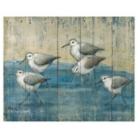 Masterpiece Art Gallery Sandpipers on Wood 22-Inch x 28-Inch Canvas Wall Art