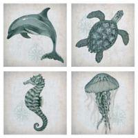 "Masterpiece Art Gallery 4-Piece Lynnea Washburn Sea Creatures 12"" Wall Art"