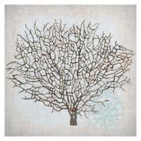 "Masterpiece Art Gallery Lynnea Washburn Coral Canvas 20"" x 20"" Canvas Wall Art"