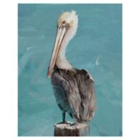 Masterpiece Art Gallery Pelican Perch-II 22-Inch x 28-Inch Canvas Wall Art