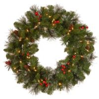 National Tree 24-Inch Crestwood Spruce Pre-Lit Wreath with Clear Lights