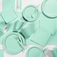 Creative Converting 245-Piece Party Supplies Kit in Mint