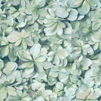 RoomMates Hydrangea Peel & Stick Wallpaper in Green/Blue