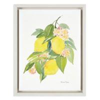 The Lemons 11-Inch x 14-Inch Framed Wall Art