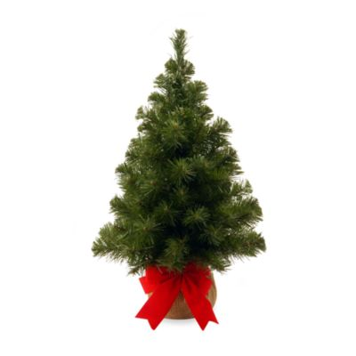 2 Foot Noble Spruce Christmas Tree With Burlap Bag
