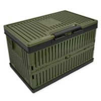 Lotus USA™ Foldable 37 qt. Cooler & Crate in Green