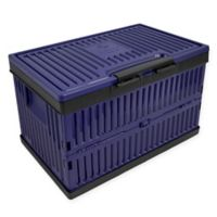 Lotus USA™ Foldable 37 qt. Cooler & Crate in Blue