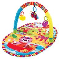 Playgro™ Play in the Park Activity Gym