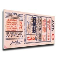 MLB New York Yankees Sports 15-Inch x 28-Inch Framed Wall Art
