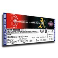 MLB Boston Red Sox Sports 11-Inch x 32-Inch Framed Wall Art
