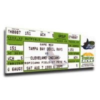 MLB Tampa Bay Rays Sports 11-Inch x 32-Inch Framed Wall Art