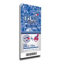 MLB Toronto Blue Jays Sports 13-Inch x 33-Inch Framed Wall Art