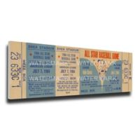 MLB New York Mets Sports 15-Inch x 29-Inch Framed Wall Art