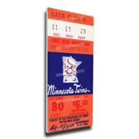 MLB Minnesota Twins Sports 13-Inch x 33-Inch Framed Wall Art