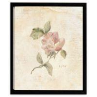 Rose C 24-Inch Square Framed Wall Art