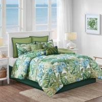 Malibu Crest 8-Piece Queen Comforter Set in Sage