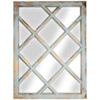 Rustic Window Pane 27.5-Inch x 20.25-Inch Rectangular Wall Mirror in Mint Green
