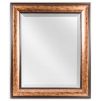 Crystal Art Hartley Rectangular Wall Mirror in Bronze/Brown