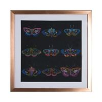Graham & Brown Butterflies 16-Inch Square Acrylic Framed Print in Black